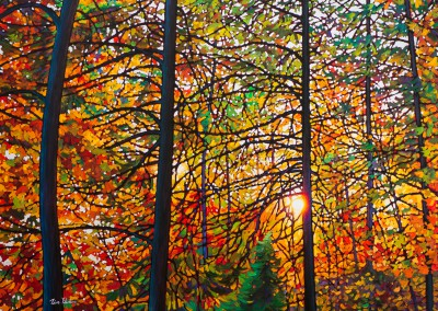 "Afternoon Light, Algoma Forest 36"" by 48"""