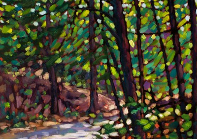 """Forest Path, Bridgewater 16"""" by 16"""""""
