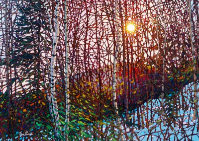 "Morning Birches, Mont Tremblant 30"" by 40"""