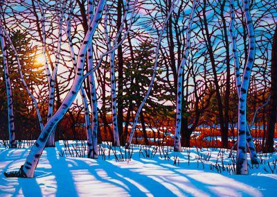 "A Walk in the Woods, Lynde Marsh 38"" by 57"" (NEW)"