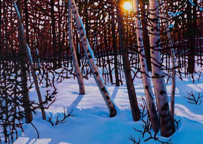 "The White Birches, Mont Tremblant 36"" by 36"""