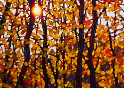 """Amber Light 18"""" by 18"""""""